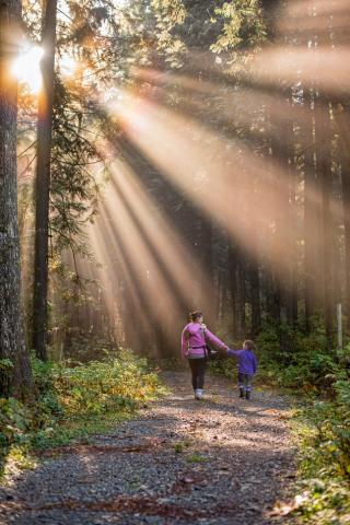 mother and child walking down a forest path